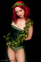 Poison Ivy by KrisEz