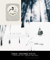 [PACK TEXTURE] Winter by amphetamines' by DAMIANsoul