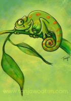 Happy Chameleon by tygriffin