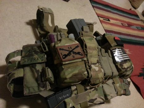 Plate Carrier left by CasualtyOfWar