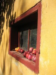 baked apples by ttymo by Botosani