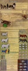 Azaroth Species Sheet by ARVEN92