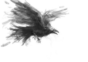 Sketch: Undead Raven by michifromkmk