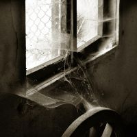 a window and a wheel by NuclearSeasons