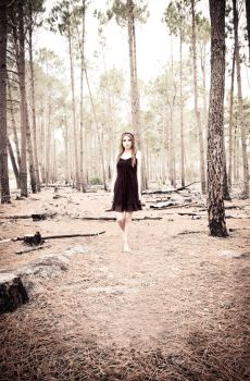 MISSynthetic Walking the Woods by MISSynthetic