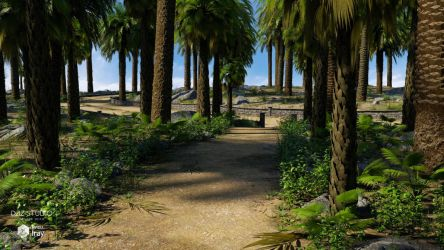 Palm Road (img03) by Andrey79