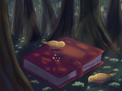 Secret Book by AriClaus