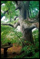 ent tree or smth like that by piraaja