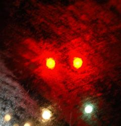 Red Light by pecaspers