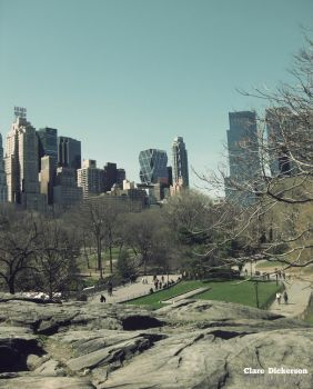 View from Central Park by ClareDickerson
