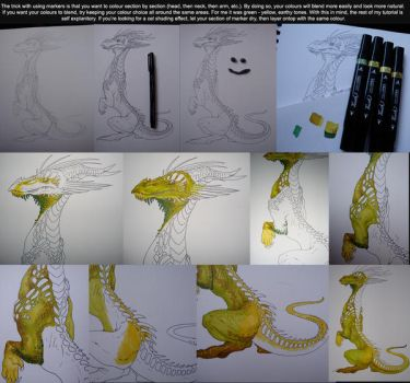 Colouring Tutorial by Crazy-Dragon