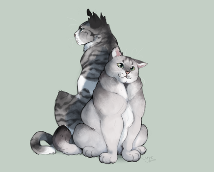 Dovewing and Ivypool by Wyveram