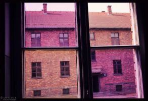 Window with the pink glasses by LuciusThePope