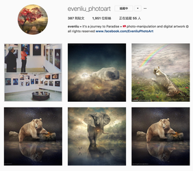 find me on instagram by evenliu