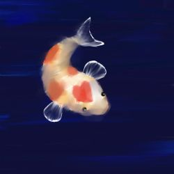 A Lonely Koi Fishy by BLAZiNx6iRL