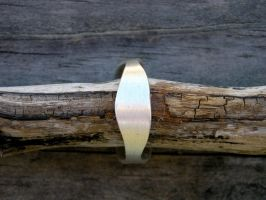 Silver Ring by xcmer