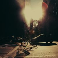 New York City: The Bicyclist. by inbrainstorm
