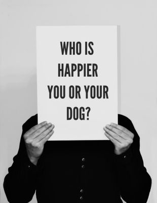 Who is happier by Weltender