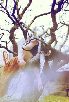 Fly Me by AliceLidel