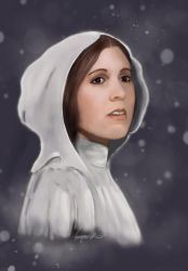 May The Force Be With You Leia by missimoinsane