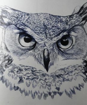 Intense Gaze of the Wizened Owl by SamGuentherArt