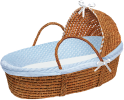 Baby Boy Moses Basket by bubupoodle
