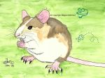 Mouse from long ago by MaguschildCloud