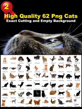 High Quality 62 Png Cats Stock by Gilgamesh-Art