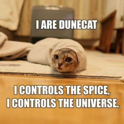 I ARE DUNECAT by AncientOfCarnage