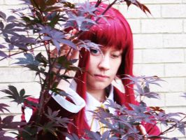 Hidden Amoung Red Leaves by SorceressCassandra