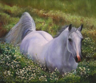 Dream horse by be-yu