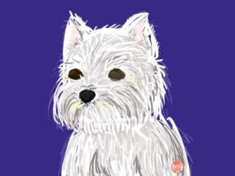 Westie by FelicisAstrum