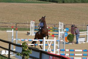 Show Jumping Refusal Series 1 by LuDa-Stock