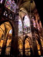 Inside Leon cathedral by vmribeiro