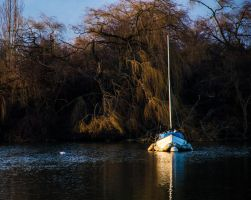 Fairlop Waters - 10. by LouHartphotography