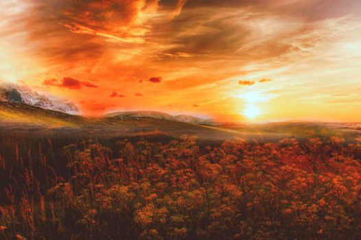 Premade Background Nature Stock 131 by Jassy2012