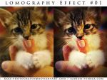 Lomography Effect PSD 02 by KarS-Photography