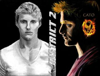 Hunger Games Cato by Catluckey