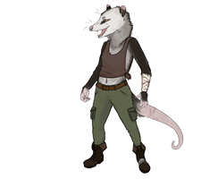 Opossums are Awesome by ariieve