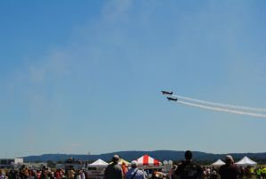 Up in the Air at the Lehigh Valley Airshow by agentpalmer