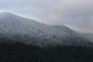 winter mountain forest stock cloudy storm sky by UnseenIvy