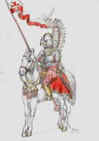 Hussar 2 by Michulec3
