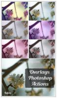 Free Color Overlays Photoshop Actions by ibjennyjenny