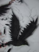 Crow of Itachi  in my wall by qamil18