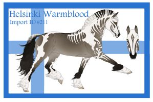 The Helsinki Warmblood Import ID #211 by LiveWild4Ever