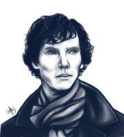 Sherlock. by BloodyAlchemist