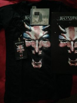 BVB VIP Gig Package by RiffRaven