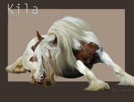Kila by QueenOfGoldfishes