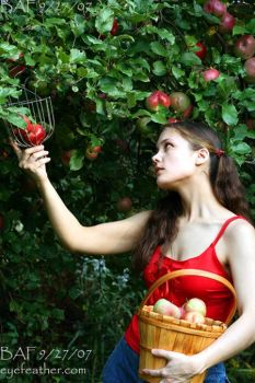 The Apple Harvest by eyefeather