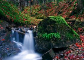 Waterfall in the forest. by lica20